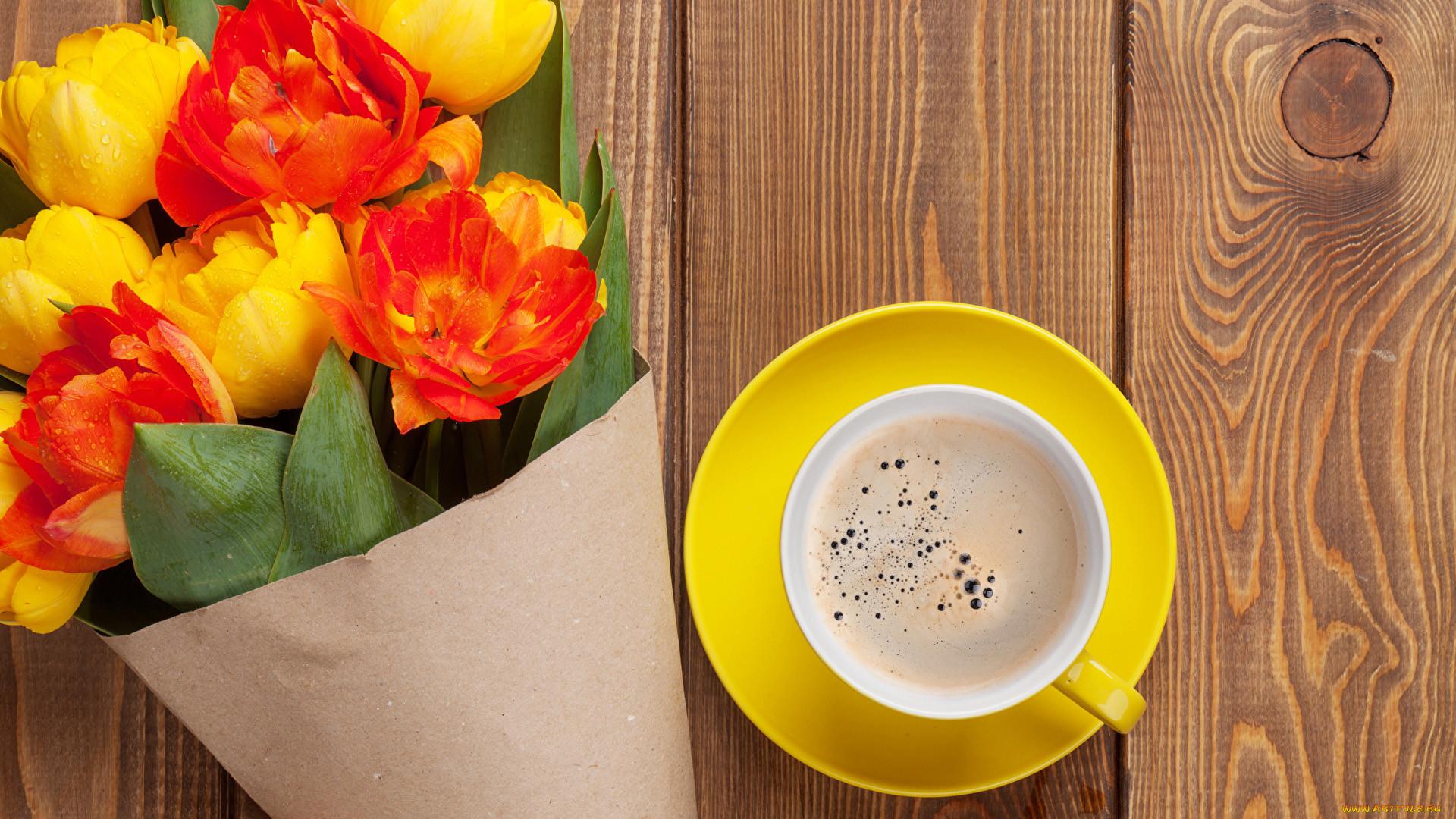 желтые тюльпаны чай утро живые лучшие картинки торжественные звуки марша